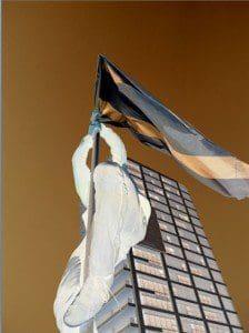 maya brinner, the flag, 2014