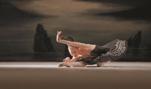 ballet st. petersburg 2016, swan lake 2.jpg, nina photos